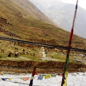 Dolpa the source of Shilajit